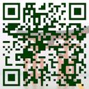 宮島観光に使えるお得な情報満載!カヤックツアー紹介、宮島近辺の駐車場、フェリー時刻表、天気予報、潮汐表など。